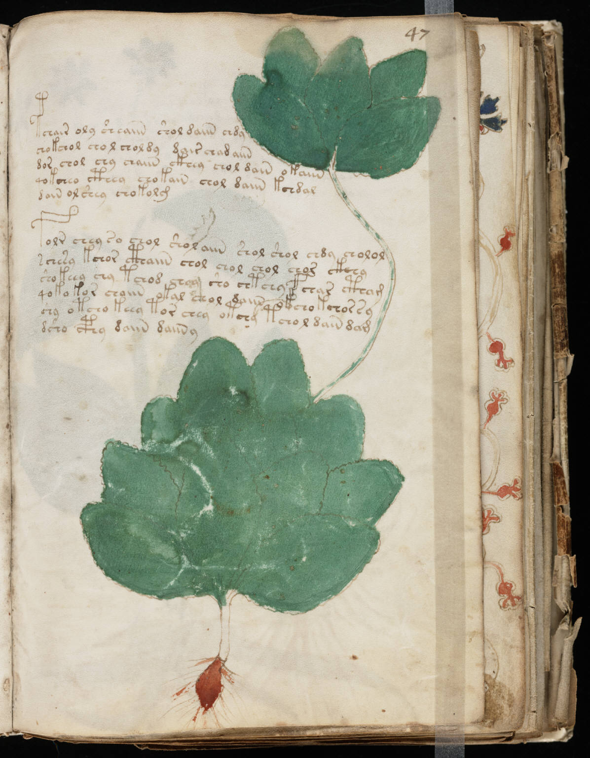 manuscrito091