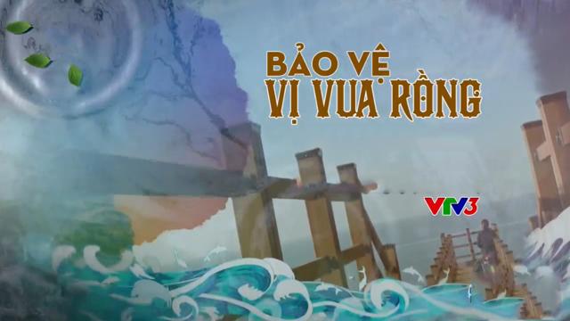 Bảo Vệ Vị Vua Rồng Trọn Bộ Tập Cuối (Phim Hàn Quốc VTV3 Thuyết Minh)