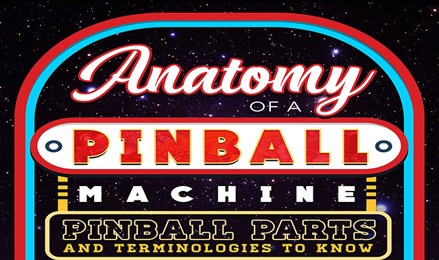 Pinball Parts and Terminologies To Know Anatomy Of A Pinball Machine #infographic