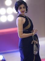 Poonam Kaur Saree New Pics 014.jpg
