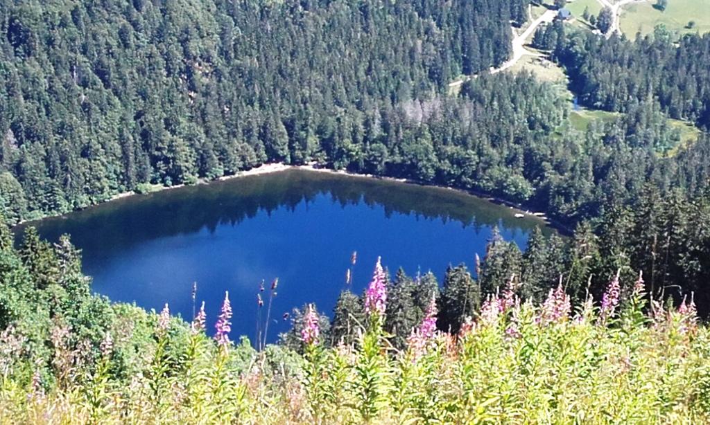 Resultado de imagen de monte feldberg
