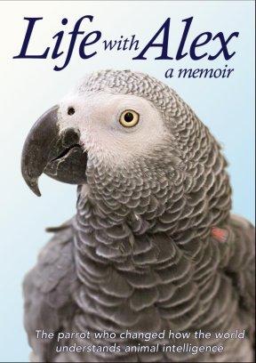 alex parrot 7