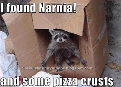 Beaver found Narnia! In a Cardboard box! And some pizza crusts!