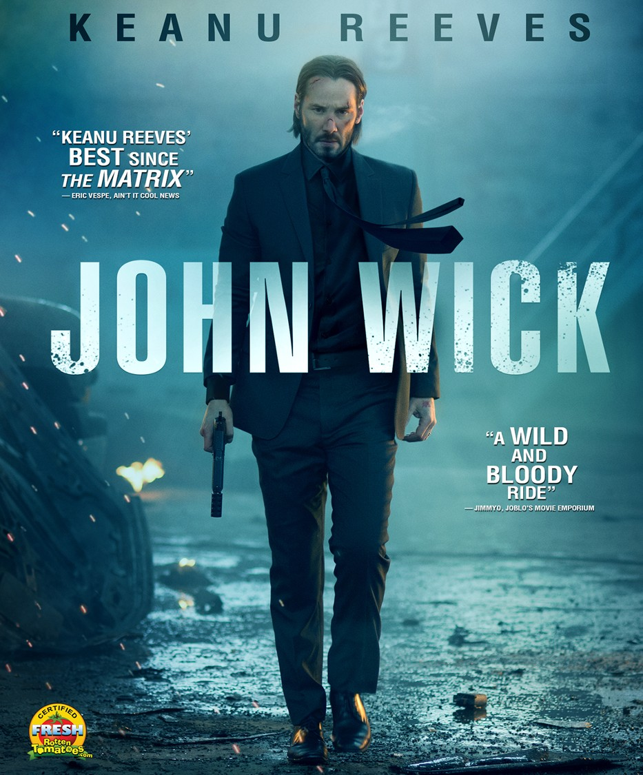 John Wick 2014 Hindi ORG Dual Audio 350MB BluRay 480p ESubs