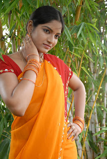Keerthi Saree Pictures (15)