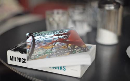 O livro orgami em uma mesa - foto artística.