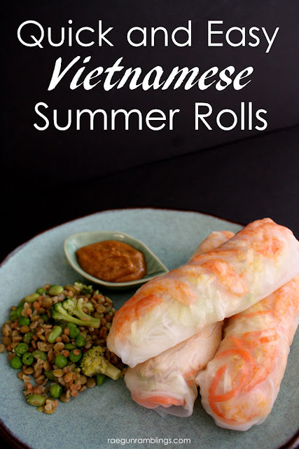 Vietnamese Summer Rolls Recipe from Rae Gun Ramblings