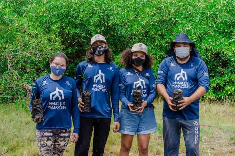Com objetivo de reflorestar áreas degradadas de manguezais da Amazônia, novos viveiros estão sendo trabalhados na zona costeira de Bragança (PA) para a produção de mudas, com um importante diferencial: o engajamento das comunidades que vivem da pesca, captura de caranguejo e extração de madeira, entre outros recursos da biodiversidade.