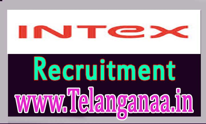 Intex Technologies Recruitment 2016-2017 For-Freshers