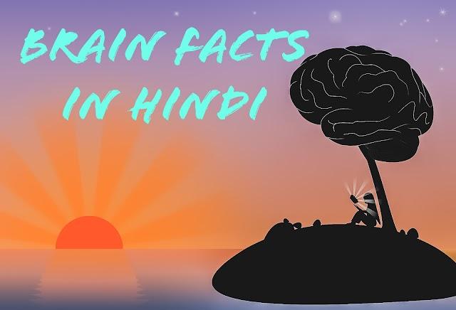 दिमाग के रोचक तथ्य , Brain Facts In Hindi