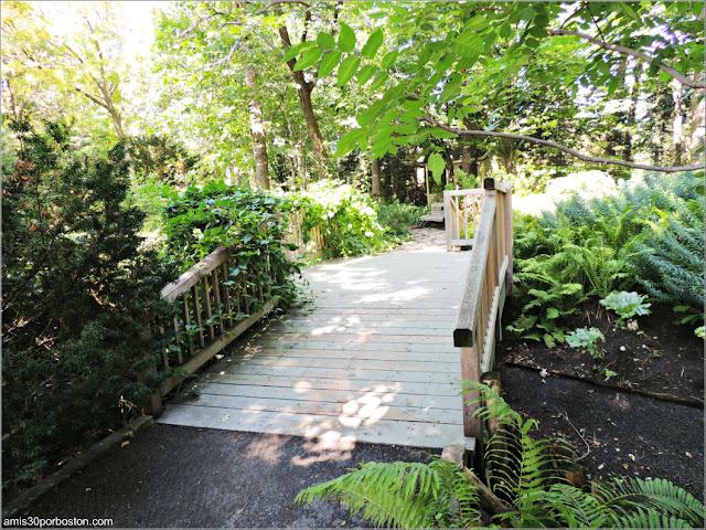 Shade Garden en el Jardín Botánico de Montreal
