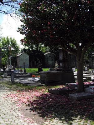 Alameda, árvores e túmulos de um cemitério