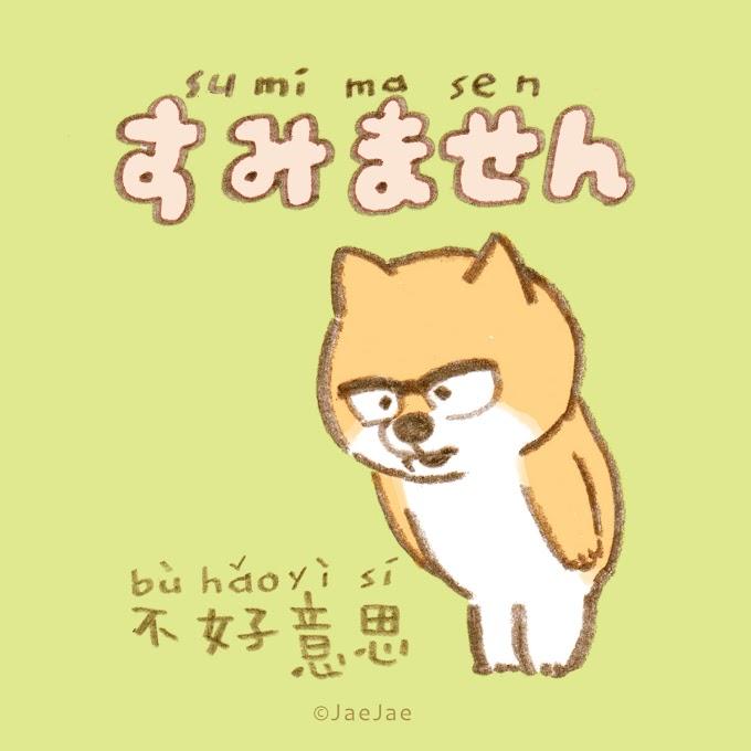 接接日文 #道歉怎麼說?
