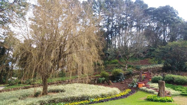 Le Jardin Parque de Lavanda em Gramado, na Serra Gaúcha