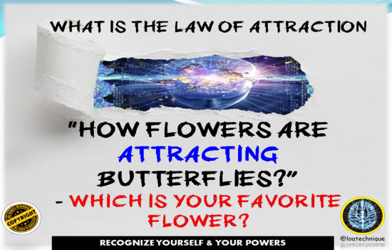 what is the law of attraction,the law of attraction definition,how to use law of attraction,the real law of attraction,manifestation the law of attraction,law of attraction tips,law of attraction for relationship law of attraction is true,law of attraction exercises,how to practice the law of attraction,the law of attraction explained,the law of attraction success story,define law of attraction, best law of attraction quotes,daily law of attraction quotes,the secret law of attraction quotes,the law of attraction quotes,law of attraction quotes,law of attraction quotes images,law of attraction quotes wallpaper,positive law of attraction quotes