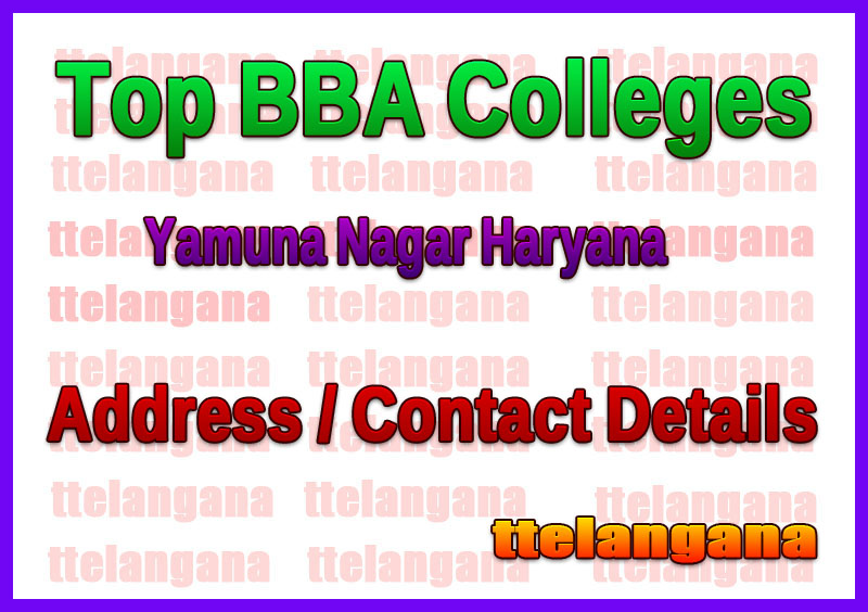 Top BBA Colleges in Yamuna Nagar Haryana