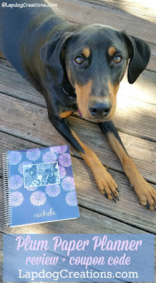 doberman mix dog with plum planner