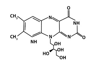 Structure of vitamin B2