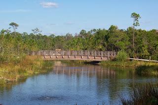 watercolor florida bridge photo