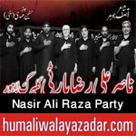 https://www.humaliwalayazadar.com/2015/04/nasir-ali-raza-party-nohay-2008-to-2016.html