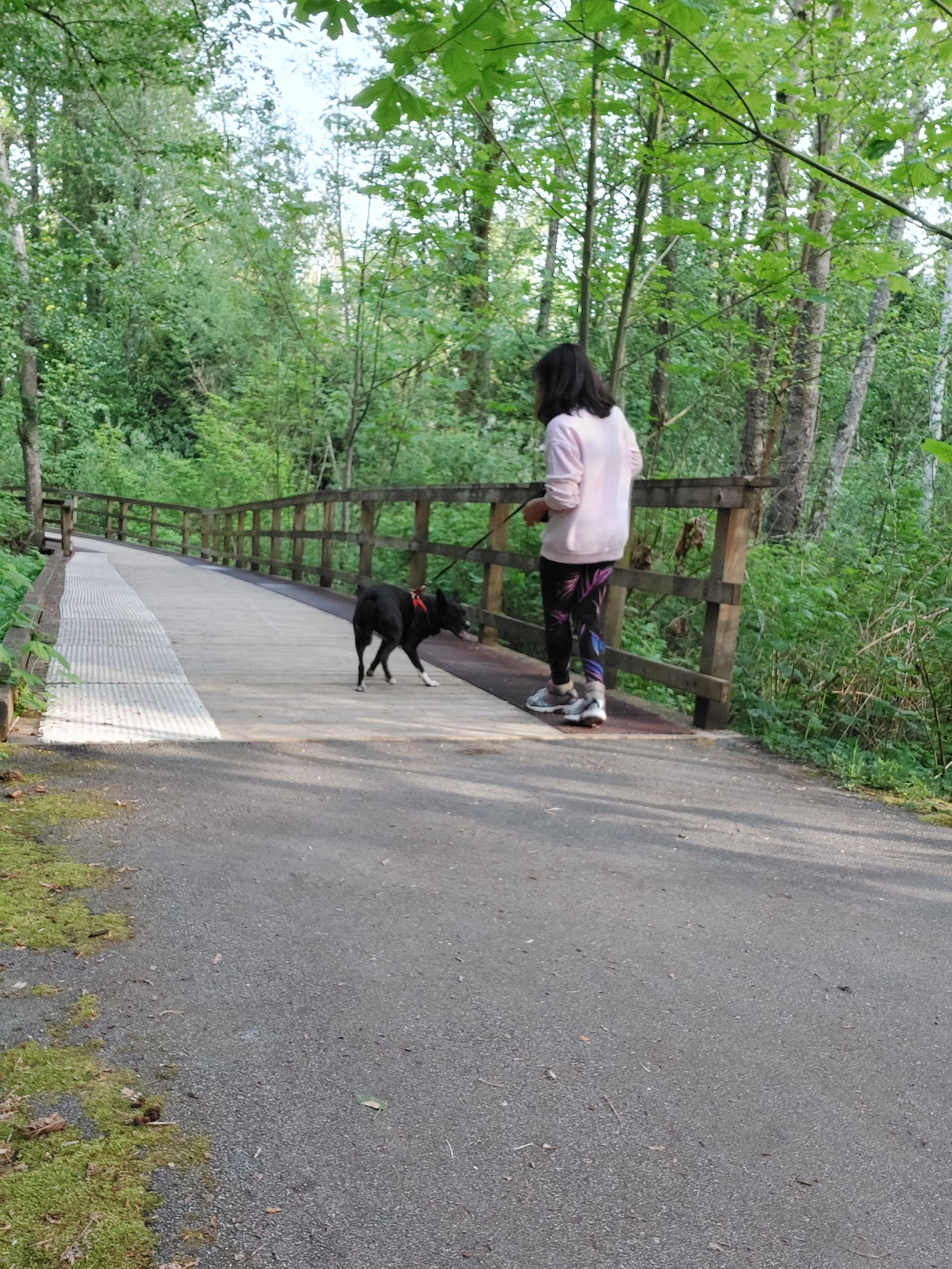 Mini bridge at Discovery Trail On the way down to Clearbrook