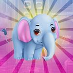 G4K Compliant Comely Elephant Escape