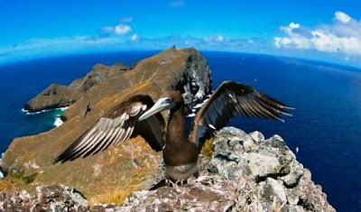 photo by Jerker Tamelander, courtesy World Conservation Congress