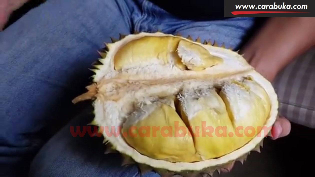 Tips Cara Memilih Durian Matang dan Manis 5