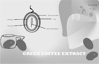 seed extract of green coffee
