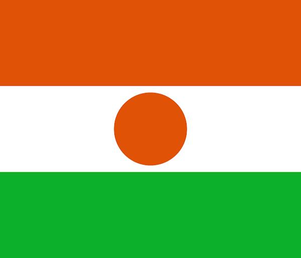 Logo Gambar Bendera Negara Niger PNG JPG ukuran 600 px
