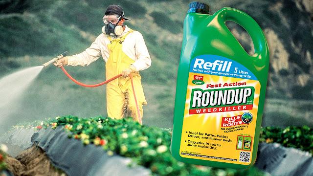 Χρησιμοποιείται στην Αργολίδα το ζιζανιοκτόνο Roundup που διχάζει την Ευρώπη (βίντεο)