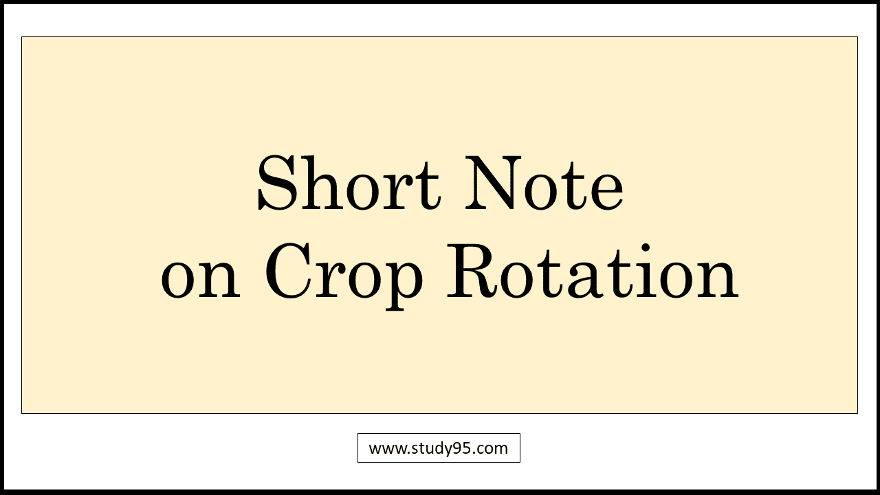 Note on Crop Rotation