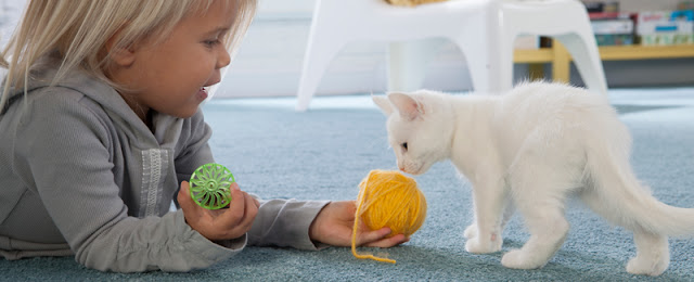 Young girl comfortably plays with kitten on carpet.