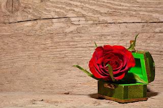 En Güzel Çiçek Konulu Şiirler ile ilgili aramalar çiçek ile ilgili şiirler kıtalık çiçek ile ilgili şiirler ünlü şairlerden çiçek şiiri özdemir asaf çiçek ile ilgili şiirler kısa çiçek şiir edip cansever çiçek şiir can yücel çiçek şiir tumblr çiçekler şiiri aşık veysel
