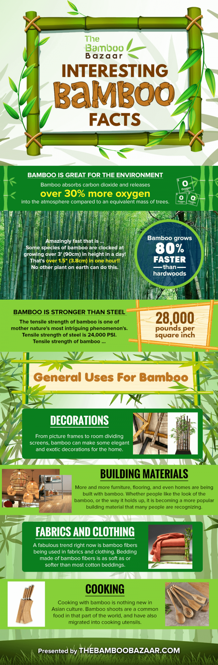 Interesting Bamboo Facts for the Curious Mind #infographic
