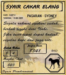 SYAIR SYDNEY 31-08-2019