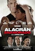 Alacran enamorado (2013)
