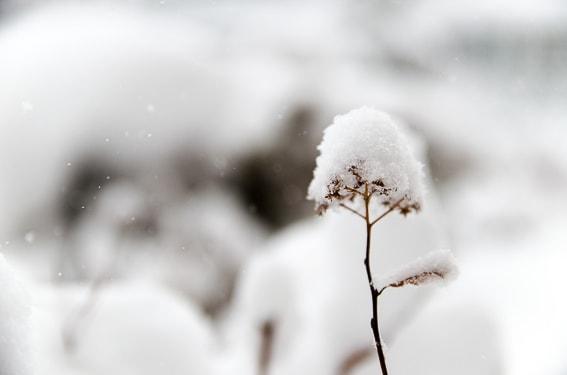 La ciudad mas fria del mundo esta en Siberia