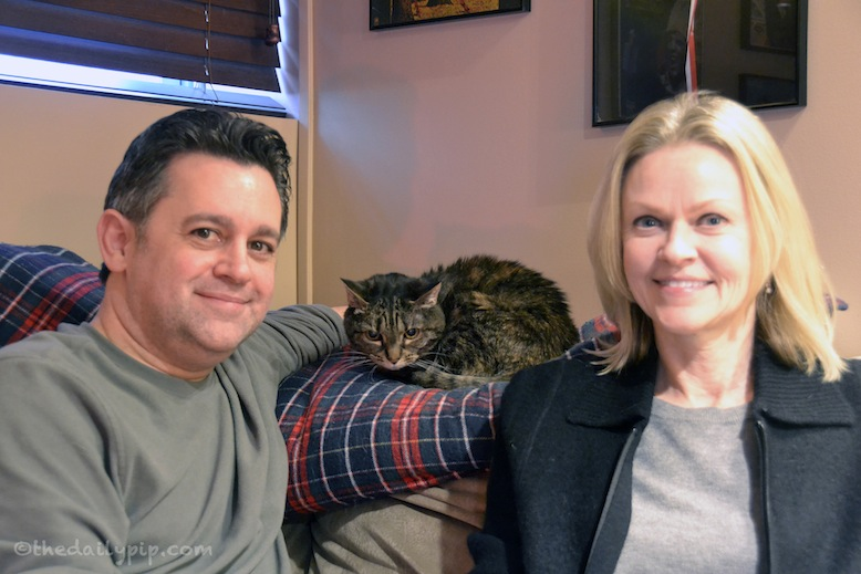 Angelina, the formerly abused cat, thanks her adopters for giving her a second chance