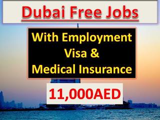 jobs in dubai free zone,urgent jobs in dubai freezone