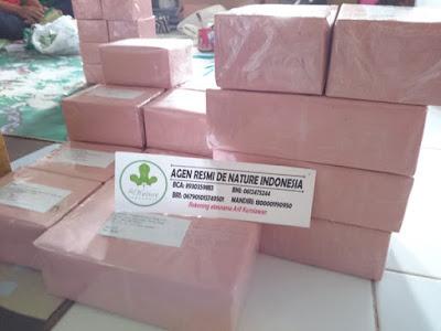 Paket Kemasan Polos Obat Batu Ginjal