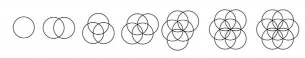 Giải mã bí ẩn thời cổ đại: Bông hoa Sự sống và hình học Linh thiêng