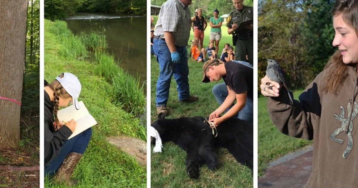 pa environment digest blog  apply now  wildlife leadership academy youth conservation ambassador