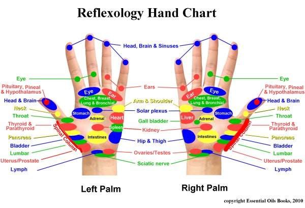 Reflexology Charts Tend To Vary Here S A Slightly Diffe Chart