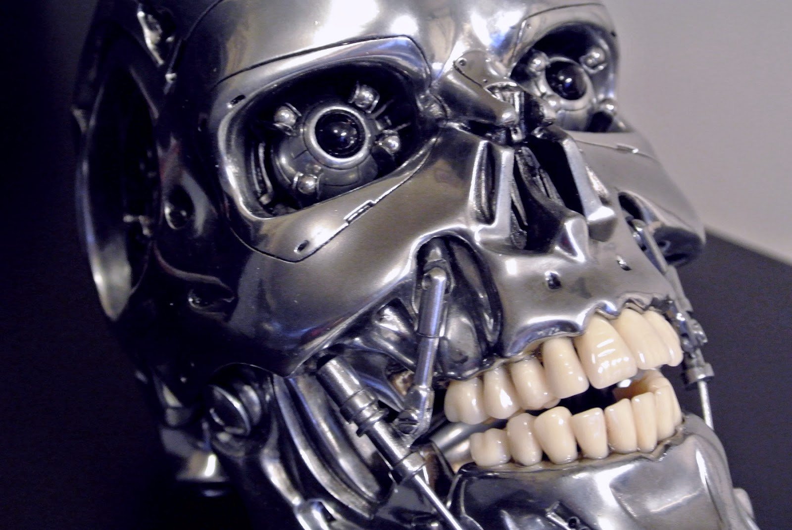 After this I beg...T 800 Terminator Skull