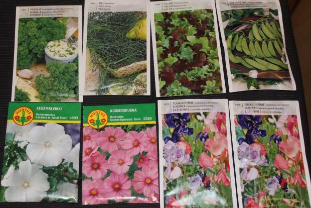 Hyötytarhurin siemeniä kevään kylvöjä varten.