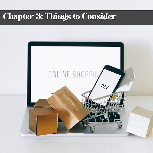 Definitive Guide to Becoming a Successful Drop shipper  -  Chapter 3: Things to Consider