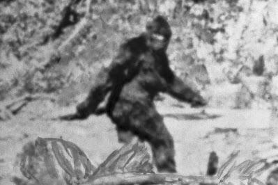 John Bergstrom, the New Bigfoot