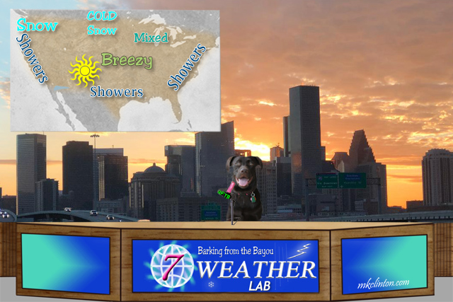 Paisley the Weather Lab forecasting weather
