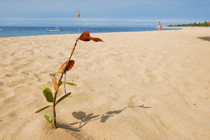 Fasilitas Wisata Pantai Mengiat Nusa Dua